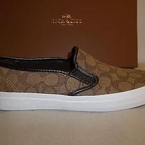 Coach Size 9.5 M Chrissy Outline Sig Khaki Chessnut Sneakers New Womens Shoes Photo