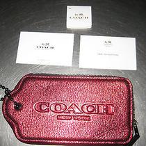 Coach Small Case/bag Photo