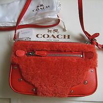 Coach Small Crossbody Rhyder Pochette in Shearling Orange F36490 Nwt Photo