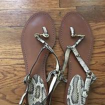 Coach Snake Print Leather Flat Sandals Photo