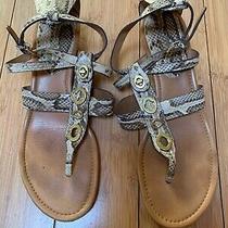 Coach Snake Skin Strappy Sandals Size 9.5 Photo