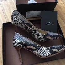 Coach Snakeskin Heels Pumps Women's Shoes Snake Print Size 5 B Photo