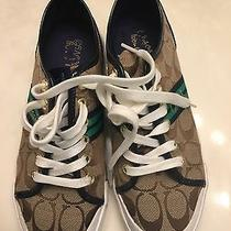 Coach Sneakers Photo
