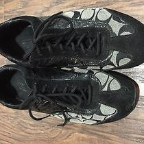 Coach Sneakers 7.5 Photo