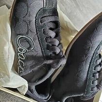 Coach Sneakers 7.5 Womanw/boxblacka1715 Devin C/suede Width Medium Comfort Photo