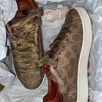 Coach Sneakers Size 5 Photo