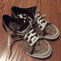 Coach Sneakers Size 8 Photo