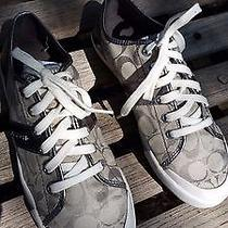 Coach Sneakers Size 9b Photo