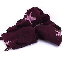Coach Star Intarsia Scarf F86021 Bright Berry/orchid Msrp 150 Photo