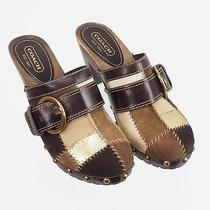 Coach Suede Leather Sebrina Chelsea Multi Color Wood Platform Heels  Size 6.5 M Photo