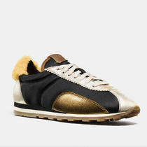 Coach Suede Sneakers With Yellow Shearing. Size 6. Free Shipping. Photo