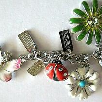 Coach-Summer Mix Enamel & Crystal Flowers Butterfly Ladybug Key Ring Fob Photo