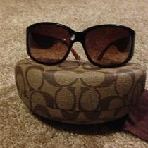 Coach Sunglasses Photo