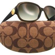 Coach Sunglasses Allie Dark Olive Trendy Authentic New Spring  Photo