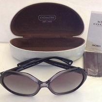 Coach Sunglasses Womans Hc 8065 L061 Kaihla Super Cute New Nwt Photo