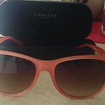 Coach Sunglasses Women Photo