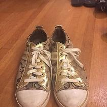 Coach Tan and Gold Sneakers Photo