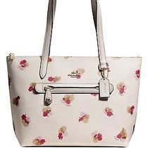 Coach Taylor Tote in Floral Print  Photo