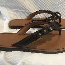 Coach Tea Rose Multi Thong Sandals Women's 6.5 Flip Flop Sandals Photo