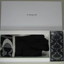 Coach Touch Tech Gloves & Iphone 5 Case Gift Set Black Style F67242 New in Box Photo
