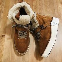 Coach Urban Hiker Suede Shearling Ankle Boots Saddle Natural G1354 Nwob Size 8 Photo