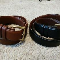 Coach Us Mens Glove Tanned Cowhide Belt Set With Solid Brass Buckles Sz 36/90c Photo