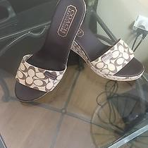 Coach Wedge Shoes New  Photo