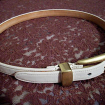 Coach White Leather Belt Real Glove Tanned Cowhide & Solid Brass Buckle Size S Photo