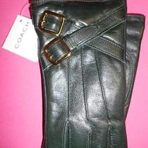 Coach Women Buckles Leather Gloves Wrist Cashmere Lined Winter Size 7 New 236 Photo