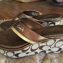 Coach Women's Jody Brown /tan/ Bronze /gold Signature Wedge Shoes Size 7.5b Photo