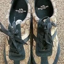 Coach Women's  Kelson Suede Sneaker Khaki/navi Size 8.5 Us Photo