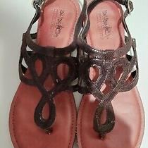 Coach Women's Ladies Size 7 Sandals  Phyllis Black Good Condition Photo