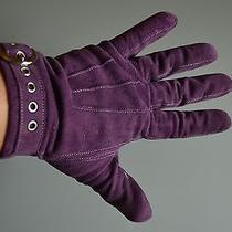 Coach Women's Purple Suede Gloves Photo