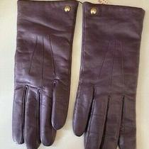 Coach - Women's Soft Leather Gloves. Nwt Violet. Soft Wool Lining Sz 8 Photo