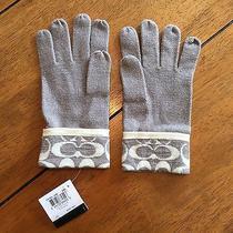Coach Women's Sparkle Gray Gloves Nwt Photo