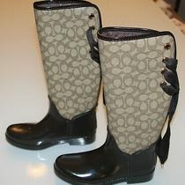 Coach Women's Tristee Brown/smoke Rubber Rain Boot 7 Knee High Logo Lace A00268 Photo