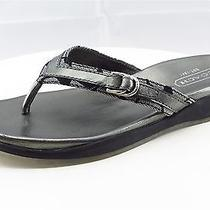 Coach Women Sandal Shoes Size 8 Pewter Leather Flip Flops Photo