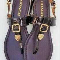 Coach Womens 8 Cassidy Brown Shiny Leather Slingback Thong Sandals Euc Photo