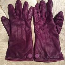Coach Womens Leather Gloves Photo