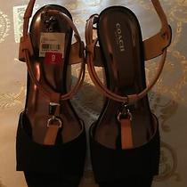 Coach Womens Shoes New in Box Size 9 Wedge Canvas & Cork Photo