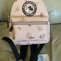 Coach X Disney X Minnie Mouse Mini Backpack Handbag Big City New York New Photo