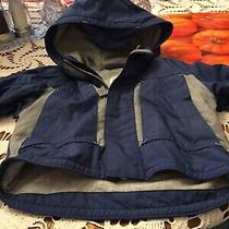 Coat for Baby Baby Gap Brand Size 3-6 Months Photo