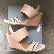 Coclico Julie Blush Pink Suede Wedges 37.5 Us 7 Pre-Loved in Box Photo