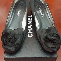 Coco Chanel Black Pumps Silver Kitten Heel Shoes Italian Size 39 Us Size 9 W/box Photo