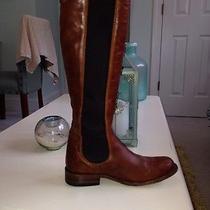 Cognac Riding Chealsea Boot Photo