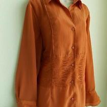 Coldwater Creek Orange-Brown Lace Elements Ruffle Cuffs Blouse Shirt Top Size 2x Photo