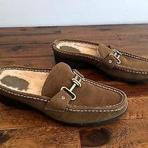 Cole Haan 100 Suede Leather Sherpa Lined Buckle Mules Slides Shoes Size 7 B Photo