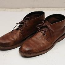 Cole Haan Brown Leather Glenn Chukka Boots C11777  Size  11m Photo