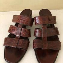 Cole Haan Crocodile Sandals (Circa 1999) -- Size 8.5 B Photo