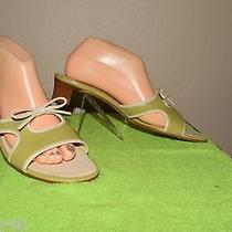 Cole Haan D13722 Celery Green and Off White Leather Slide Sandals Size 10 Photo